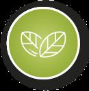 biodegradable-compostable